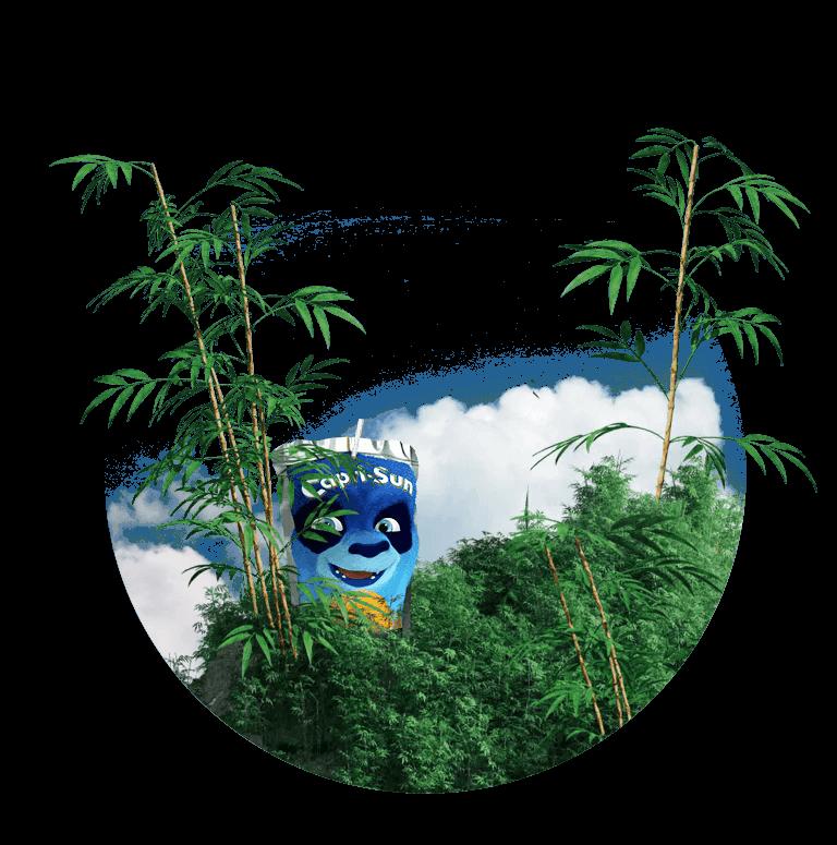 Animal_Panda_01a